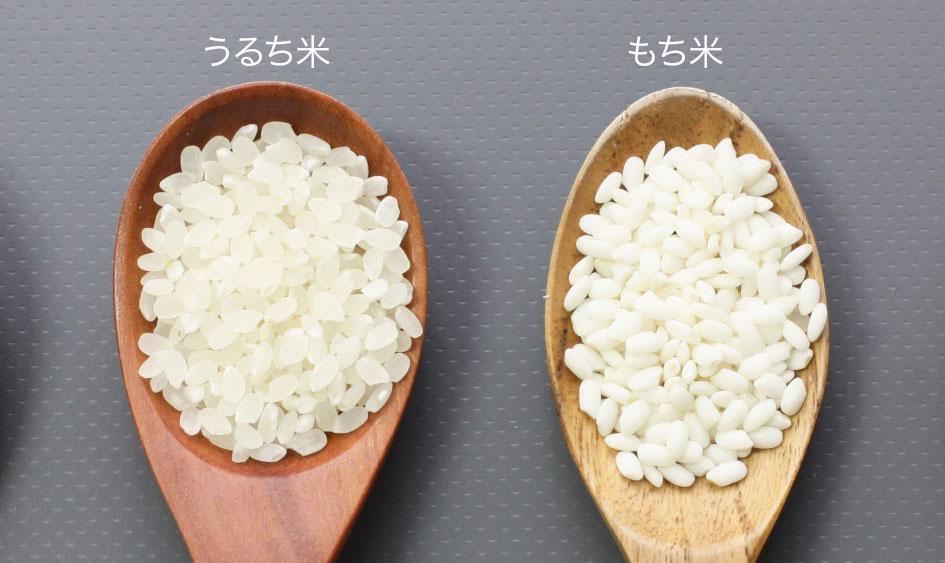 うるち米ともち米の見た目の違い
