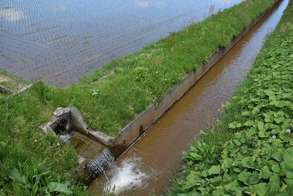 豊かな水の用水路